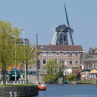 Haarlem INTO business